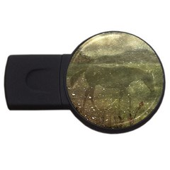 Flora And Fauna Dreamy Collage 2gb Usb Flash Drive (round)