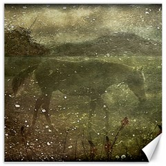 Flora And Fauna Dreamy Collage Canvas 16  X 16  (unframed)