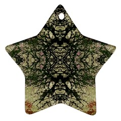 Winter Colors Collage Star Ornament (Two Sides)