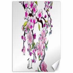 Cherry Bloom Spring Canvas 12  x 18  (Unframed)