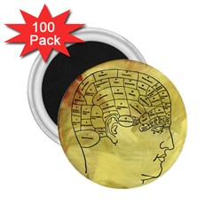 Brain Map 2 25  Button Magnet (100 Pack)