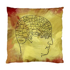 Brain Map Cushion Case (two Sided)
