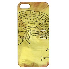 Brain Map Apple Iphone 5 Hardshell Case With Stand