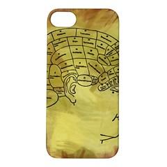 Brain Map Apple iPhone 5S Hardshell Case