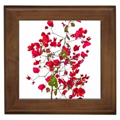 Red Petals Framed Ceramic Tile