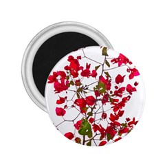 Red Petals 2.25  Button Magnet