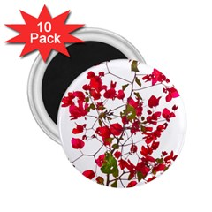 Red Petals 2.25  Button Magnet (10 pack)