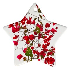Red Petals Star Ornament (Two Sides)