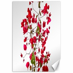 Red Petals Canvas 12  x 18  (Unframed)