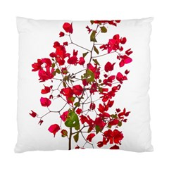 Red Petals Cushion Case (single Sided)