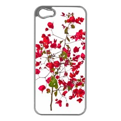 Red Petals Apple iPhone 5 Case (Silver)