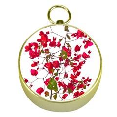 Red Petals Gold Compass