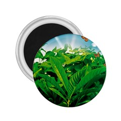 Nature Day 2 25  Button Magnet