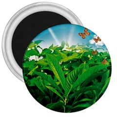 Nature Day 3  Button Magnet