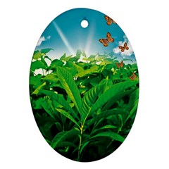 Nature Day Oval Ornament