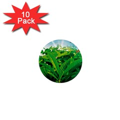 Nature Day 1  Mini Button Magnet (10 Pack)