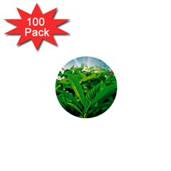 Nature Day 1  Mini Button (100 pack)
