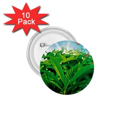 Nature Day 1.75  Button (10 pack)