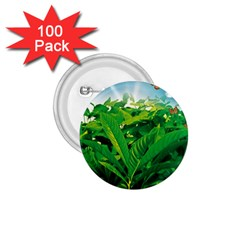 Nature Day 1 75  Button (100 Pack)