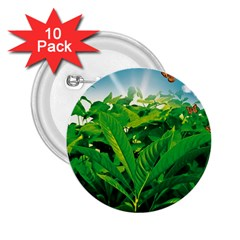 Nature Day 2.25  Button (10 pack)
