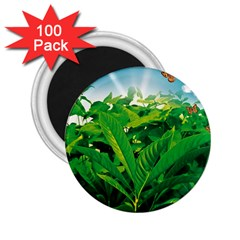 Nature Day 2.25  Button Magnet (100 pack)