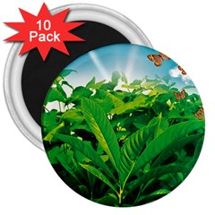 Nature Day 3  Button Magnet (10 Pack)