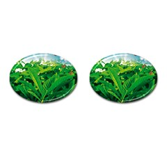 Nature Day Cufflinks (Oval)