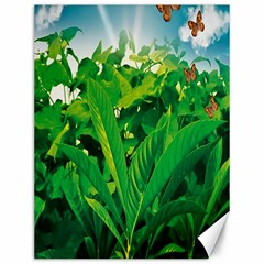 Nature Day Canvas 12  x 16  (Unframed)