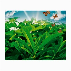 Nature Day Glasses Cloth (small, Two Sided)