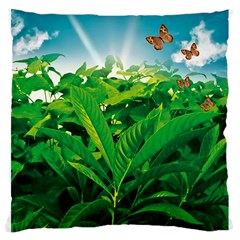 Nature Day Large Cushion Case (two Sided)