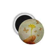 Butterflies Charmer 1.75  Button Magnet