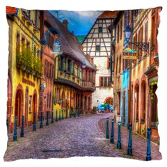 Alsace France Large Cushion Case (two Sided)