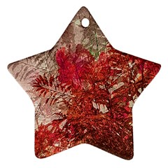 Decorative Flowers Collage Star Ornament (two Sides)