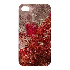 Decorative Flowers Collage Apple Iphone 4/4s Hardshell Case