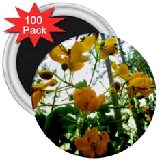Yellow Flowers 3  Button Magnet (100 pack)