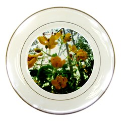 Yellow Flowers Porcelain Display Plate