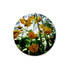 Yellow Flowers Drink Coasters 4 Pack (round)