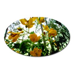 Yellow Flowers Magnet (Oval)