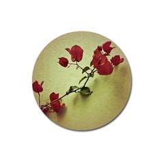 Santa Rita Flower in Warm Colors Wall Photo Magnet 3  (Round)