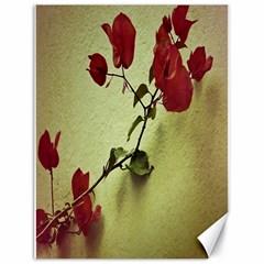 Santa Rita Flower Canvas 18  X 24  (unframed)