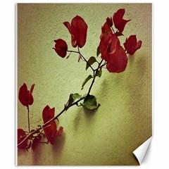 Santa Rita Flower Canvas 20  x 24  (Unframed)