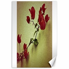 Santa Rita Flower Canvas 20  x 30  (Unframed)