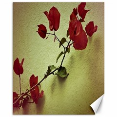 Santa Rita Flower Canvas 11  x 14  (Unframed)