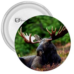 Majestic Moose 3  Button