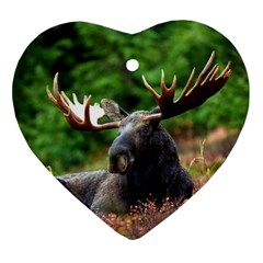 Majestic Moose Heart Ornament