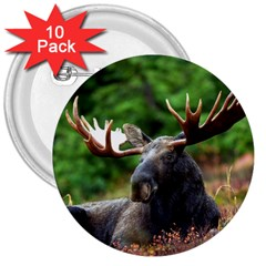 Majestic Moose 3  Button (10 Pack)