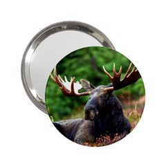 Majestic Moose Handbag Mirror (2.25 )
