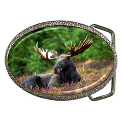 Majestic Moose Belt Buckle (Oval)