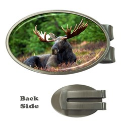 Majestic Moose Money Clip (Oval)