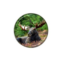 Majestic Moose Golf Ball Marker 4 Pack (for Hat Clip)